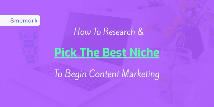 niche marketing - Content Marketing