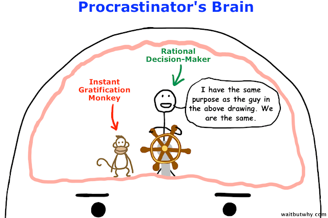 gratification monkey term - viral content