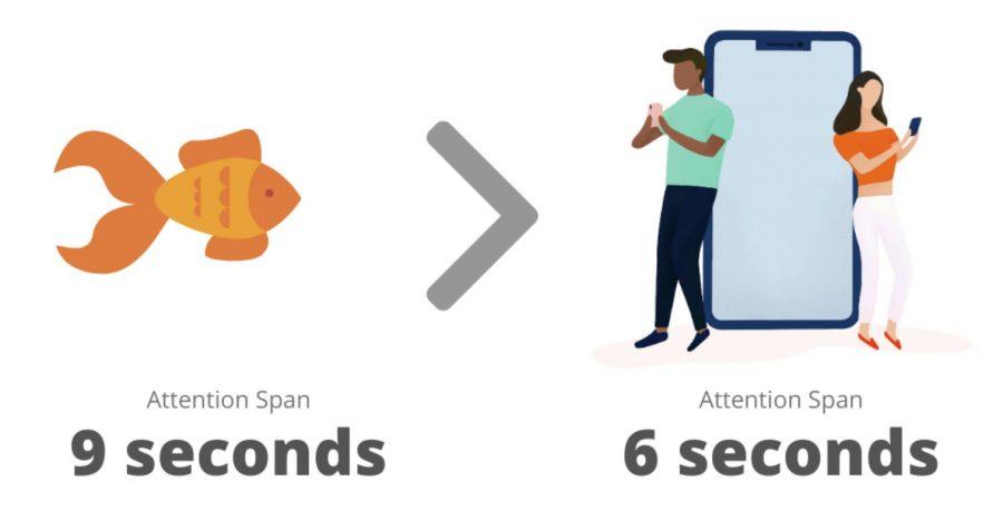 Online attention spans